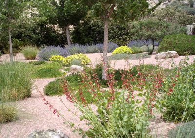 Water Conserving Gardens & Xeriscape